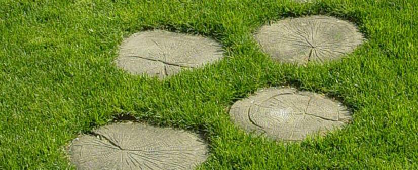 Pulizia e Manutenzione ordinaria di parchi e giardini