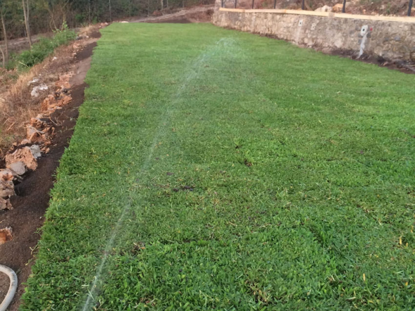 Realizzazione di Impianti di Irrigazione